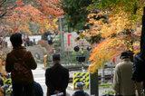 Kamakura041