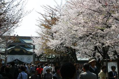 9chidorigafuchi_0021
