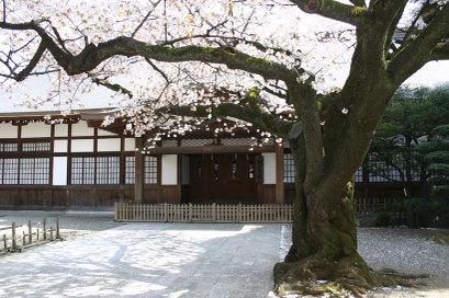 9chidorigafuchi_0071
