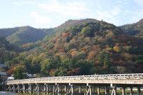 200911arasiyama_0101