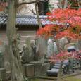 Kamakura023