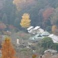 Kamakura035