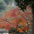 Kamakura037