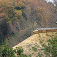 Kamakura051