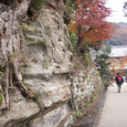 Kamakura083