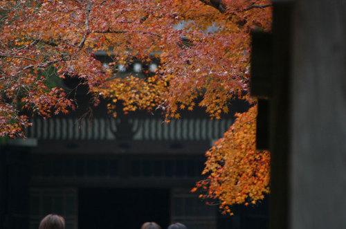 Kamakura009