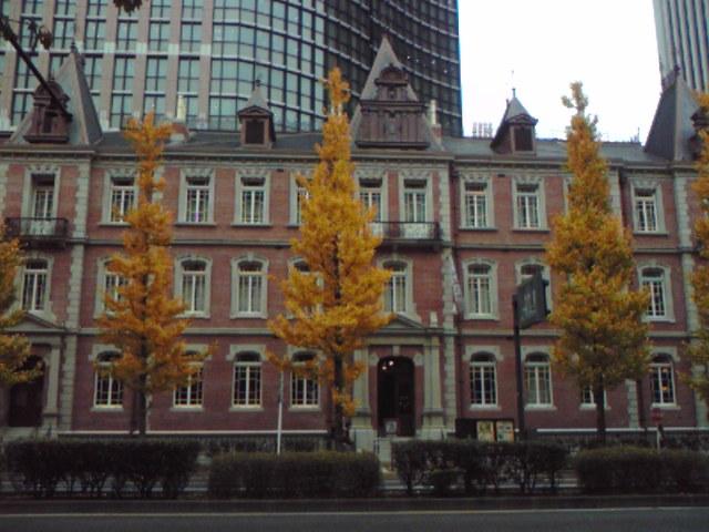東京駅周辺も秋模様